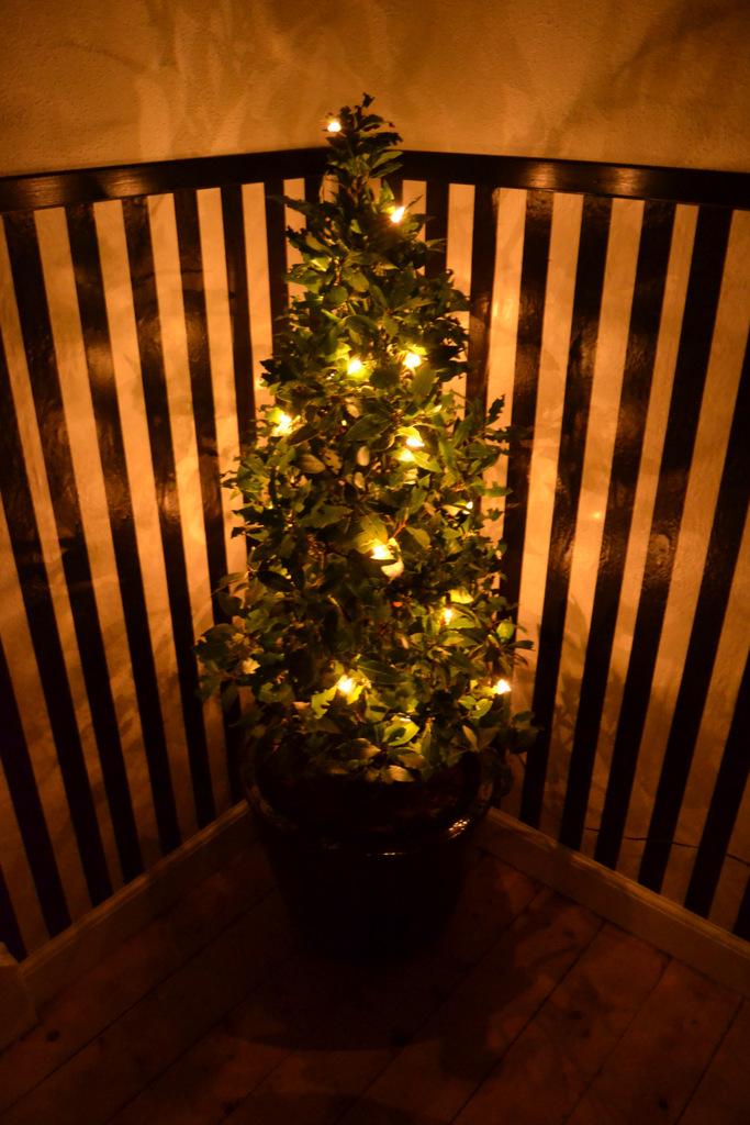 4. december – lidt om julelys…